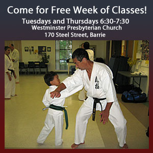 Try Free Karate Classes in Barrie